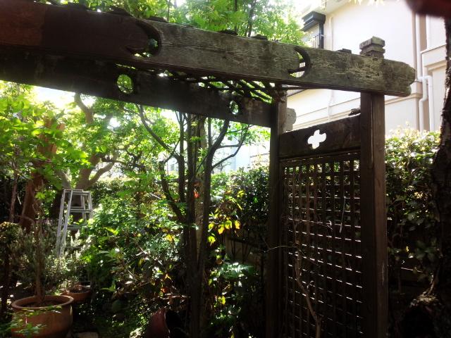 古くなったバラ棚(パーゴラ)の交換