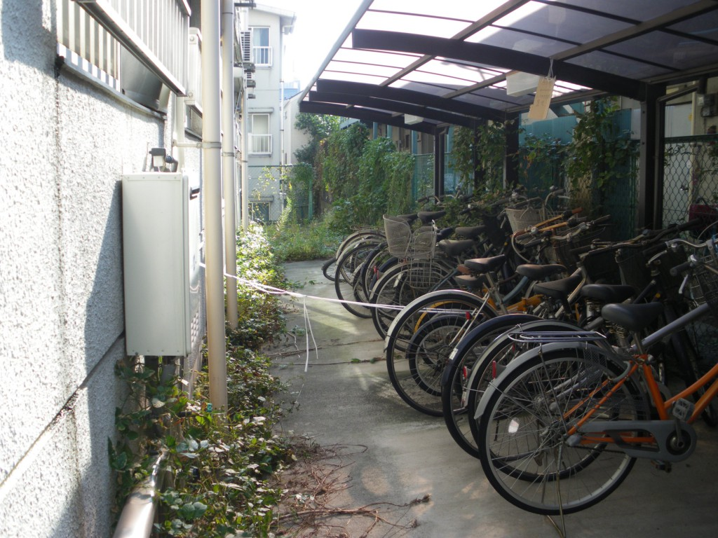 新宿区・集合住宅側の除草作業