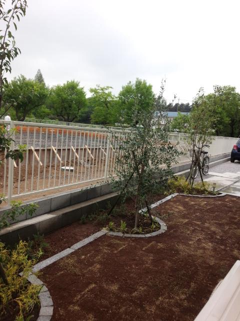 造園工事完2・所沢個人邸